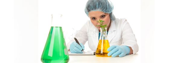 Scientist With Plant and Beakers