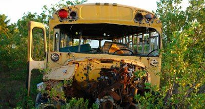 School Bus in a Field